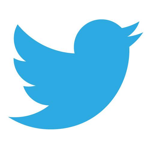 twitter-logo-2013